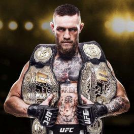 Test – EA SPORTS UFC 3