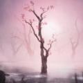 11-11: Memories Retold – Un vlog pour présenter la touche artistique
