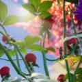 """Grounded – Un mode """"Arachnophobie"""" dans le jeu !"""