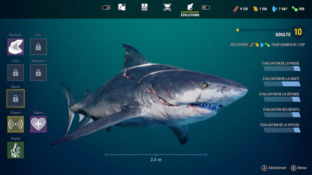 Maneater-Menu-Evolution-Requin-3