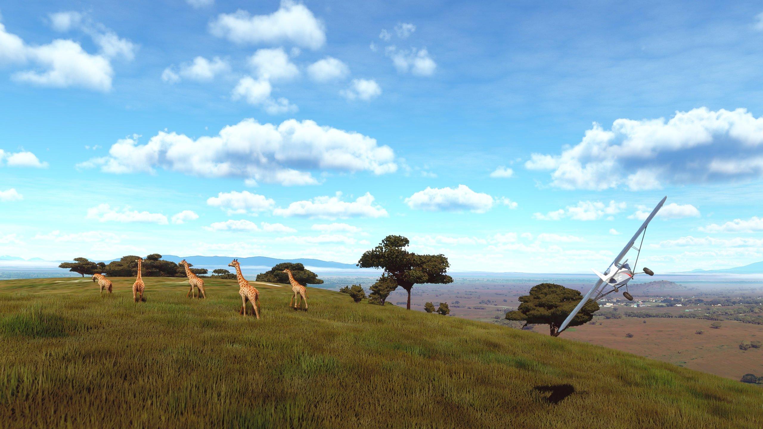 Microsoft-Flight-Simulator-Monde-Vivant