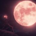 The-origin-blind-maid-lune-rouge