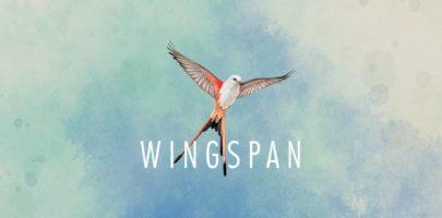 wingspan-artwork-title